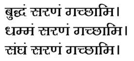 bhavans.